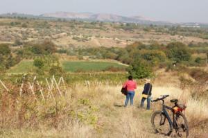 Cu bicicleta pe Dealu Mare, Ceptura